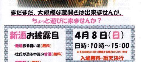 """桜うづまき・第1回「蔵""""半""""開き」"""
